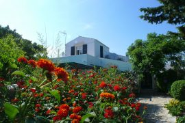 casa vicino mahon
