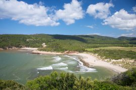 spiaggia di algaiarens