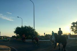 Caballos de fiestas a Menorca