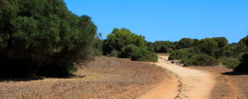 trekking minorque