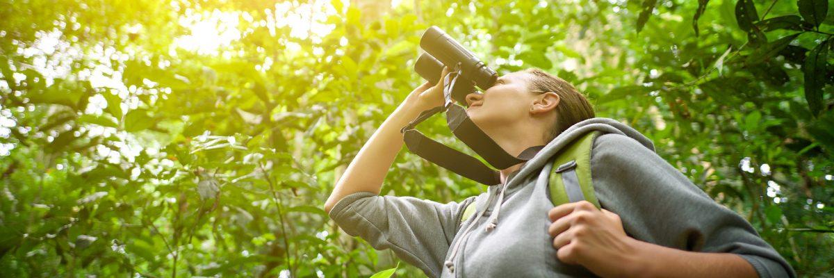 Birdwatching a Minorca