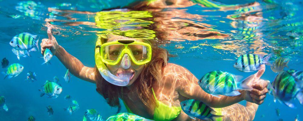 Snorkeling nella Riserva Marina del Nord di Minorca da Port d'Addaia